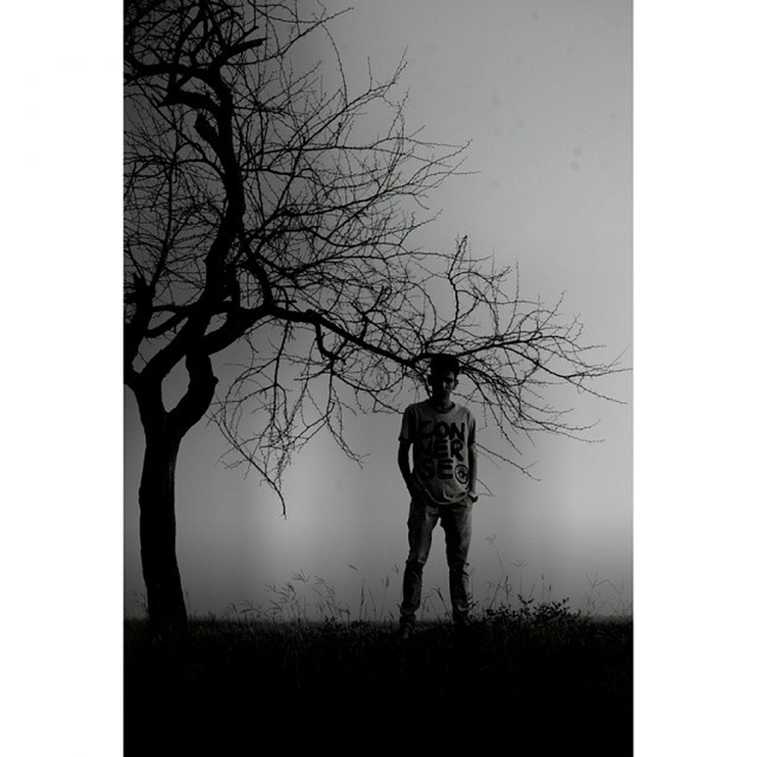 transfer print, bare tree, auto post production filter, tree, standing, lifestyles, full length, field, leisure activity, branch, silhouette, rear view, nature, tranquility, landscape, clear sky, tree trunk, men