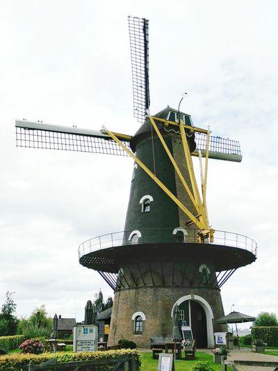 Birds perching on the Windmill Vanes Kerkhovense Molen Oisterwijk in Noord-Brabant Netherlands Hidden Gems