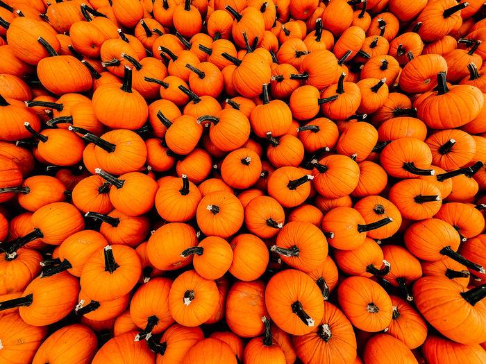Full frame shot of orange fruits for sale at market stall