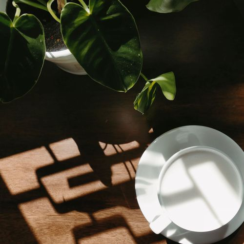 High Angle View Of Milk On Table