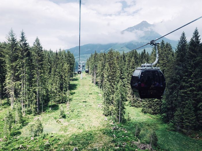 Sky Plant Cloud - Sky Tree Nature Growth Day Green Color Cable Car Beauty In Nature