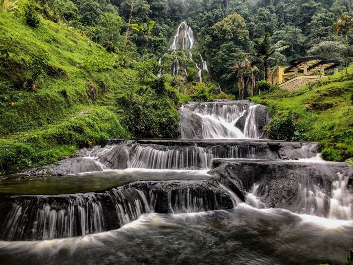 Love at first sight Water Motion Waterfall Plant Flowing Water Tree Nature Long Exposure Blurred Motion Beauty In Nature Scenics - Nature Splashing No People Forest Green Color Outdoors Spraying Day Sport Power In Nature My Best Photo