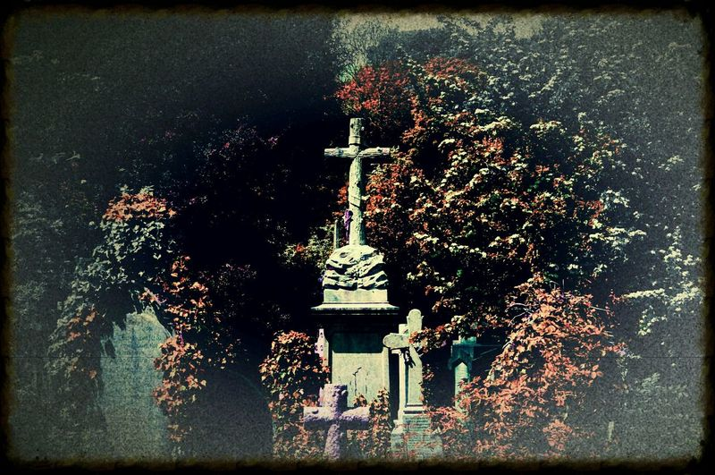 Heavy Edits Made To Look Old Walking Around The Cemetery Bristol Uk Nature Relaxing Taking Photos Nature On Your Doorstep Rundown Cemetery