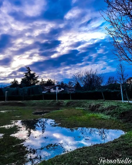 Water Reflection Cloud - Sky Sky Outdoors No People Nature Day Beauty In Nature Pixelated Tree