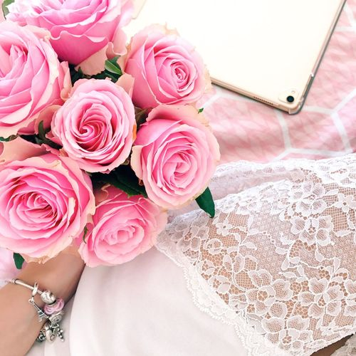 Flower Flowering Plant Plant Rose - Flower Beauty In Nature Rosé Pink Color Vulnerability  Freshness Inflorescence Fragility Bouquet High Angle View Nature Flower Arrangement Close-up Flower Head No People Outdoors Petal
