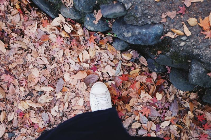 Low section of person with autumn leaves fallen on pebbles