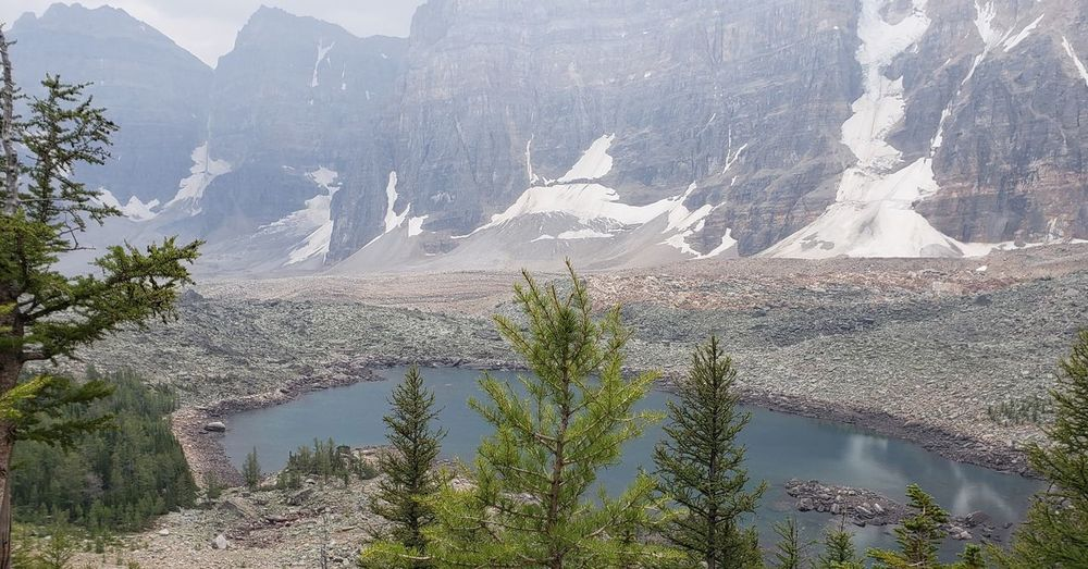 Eiffel Lake Tree Mountain Water Lake Pinaceae Mountain Peak Pine Tree Mountain Range Sky Landscape Coniferous Tree Rocky Mountains Wilderness Valley Sight Physical Geography Alpine Banff National Park  Rugged Rock Formation Geology