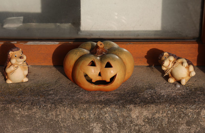Close-up of pumpkin on stone