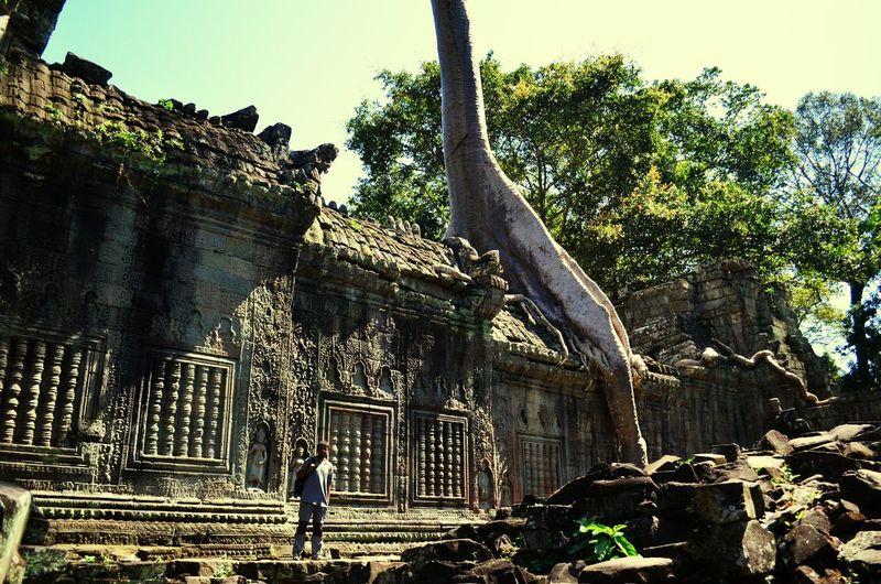 Breathtaking sights at the Angkor archeological complex Angkor Wat Angkor Cambodia