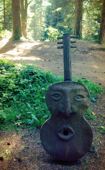Guitar Art in Nature at the Camping