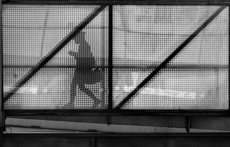 Portrait of man seen through metal fence