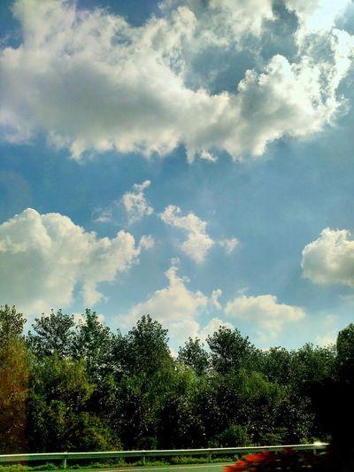 蓝天(Blue Sky)