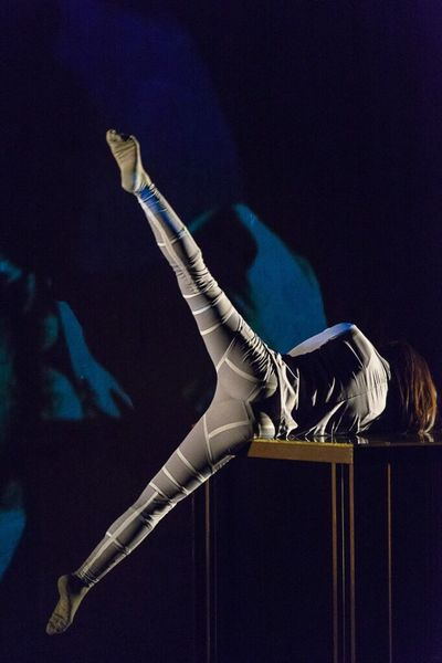 Dancer Performance Dance