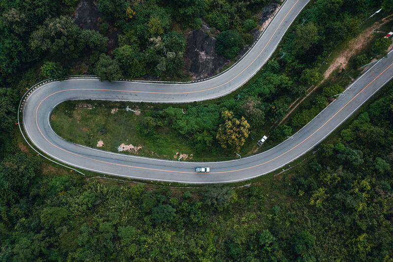 High angle view of trees by road