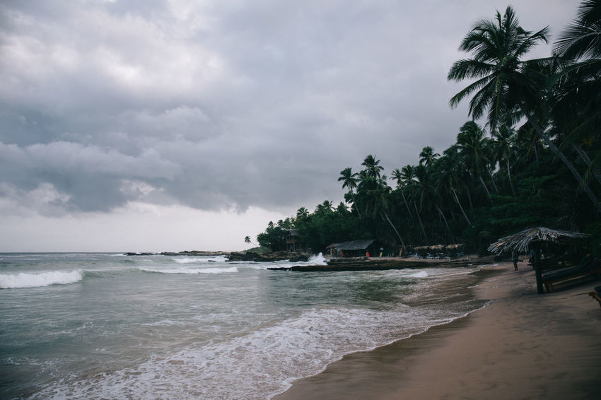 Travel in Sri Lanka Adventure Beach Beauty In Nature Cloud - Sky Discovery Exotic Exploring Horizon Over Water Motion Nature No People Palm Tree Sand Scenics Sea Sky Sri Lanka Tranquility Travel Travel Destinations Travel Photography Traveling Tree Water Wave