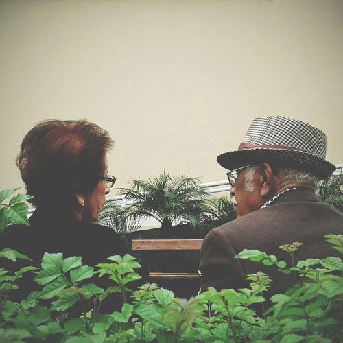 rendez vous VSCO Streetphotography Limaperu Tree Men Togetherness Headshot Senior Adult Senior Men Beard Rural Scene Sky Close-up Senior Couple Mature Couple Friend Heterosexual Couple Couple - Relationship This Is Aging Human Connection