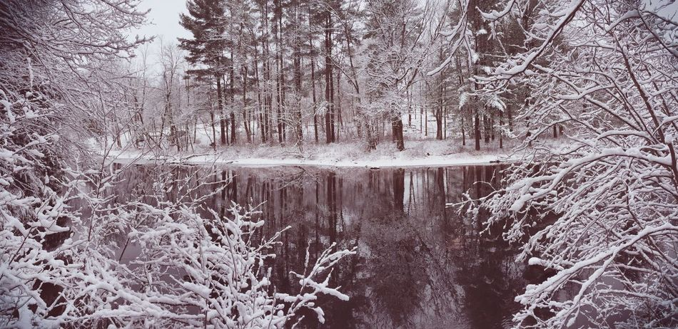 Protecting Where We Play River Stream Winter Wintertime Winter Wonderland Winter Trees Water Water Reflections Check This Out Snow Snow ❄ Enlight Enlight App Echo Filter Winter Wonderland ❄ Taking Photos It's Cold Outside Share Your Adventure