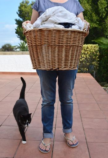 Laundry day. Woman carrying a wicker basket of wet laundry to be hung out to dry, followed by a cat. One Animal Pets Domestic Animals Mammal Full Length One Person Cat Day Basket Outdoors Real People Household Chores Real Life Real Woman Laundry Time Holding Laundry Basket Laundry Laundry Day Women Adult Freshness Adults Only