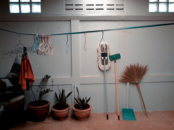 Potted plants hanging on wall at home and clothes rack