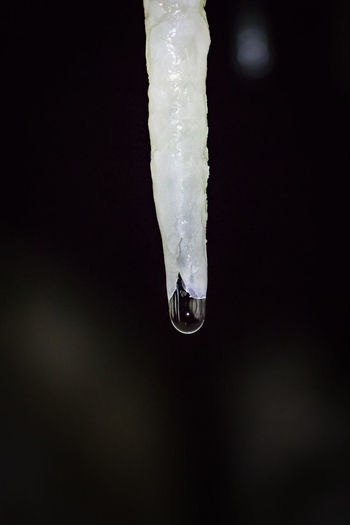 Dark Darkness Nature Northern Norway Norway Stalactite  Underground Water Droplets Aspfjordgrotta Beauty In Nature Cave Close-up Darkness And Light Droplet Extreme Terrain Geology Indoors  Limestone Nature Nordland Outdoors Power In Nature Wet White White Color