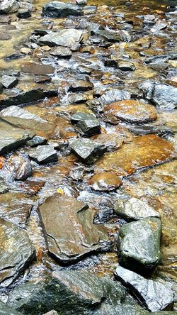 Water Rocks Water Over Rocks Flowing Nature Wet Rocks Textures And Surfaces Backgrounds Creek Stream Non Urban Scene Serenity Relaxing Natural Light Simple Pleasures Fresh Water Clear Water Mountain Stream North Carolina