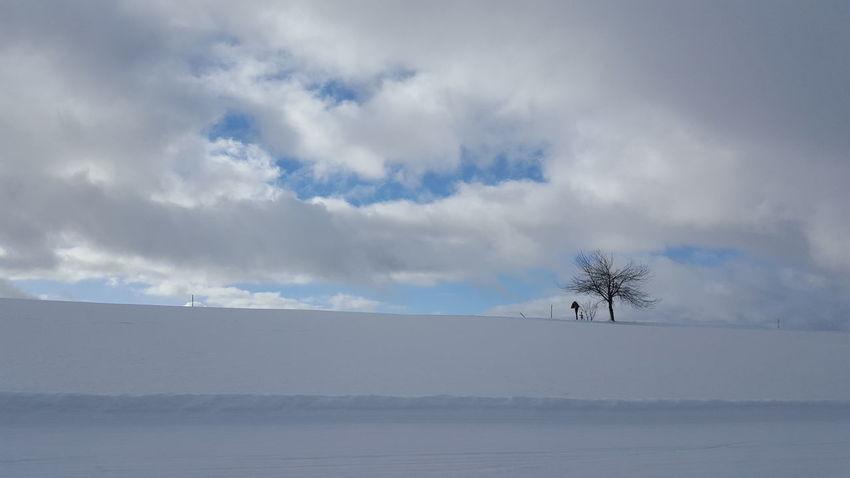 Taking Photos Taking Pictures Wintertime Blackforest Schwarzwald Mountain Nordic Skiing Snow