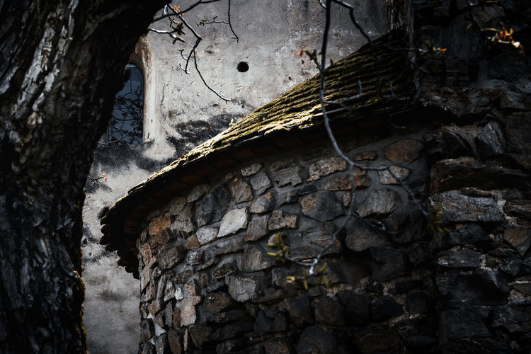 Old Chambers No People Built Structure Architecture Day Abandoned Old Wall - Building Feature Weathered Low Angle View Nature Outdoors Textured  Damaged Rough Wood - Material Solid Decline History Tree Trunk Close-up Deterioration Stone Wall Ruined Flowing Castle Fortress Water Stone Secret Hidden Mistery Historical Nikon D7500 Sibiu Romantic Sky Architecture