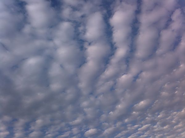 Rolling The Cloud II Cloud - Sky Full Frame Sky Low Angle View Nature Backgrounds Beauty In Nature Atmospheric Mood No People Cloudscape Weather Day Sky Only Tranquility Outdoors Scenics