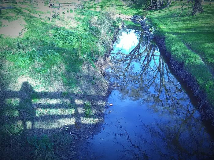 My Shadow ❤ My Shadow Looks Good Sunlight, Shades And Shadows Thats Me ♥ Tree Porn Shadows And Silhouettes My Point Of View This Week On Eyeem My Photography Taking Photos Nature Photography Water Reflections Of Beauty Reflections On The Water Water Reflections Trees Landscape #Nature #photographyStream