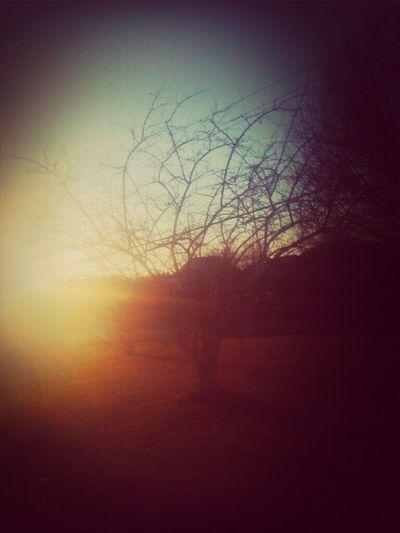 That sun>>>