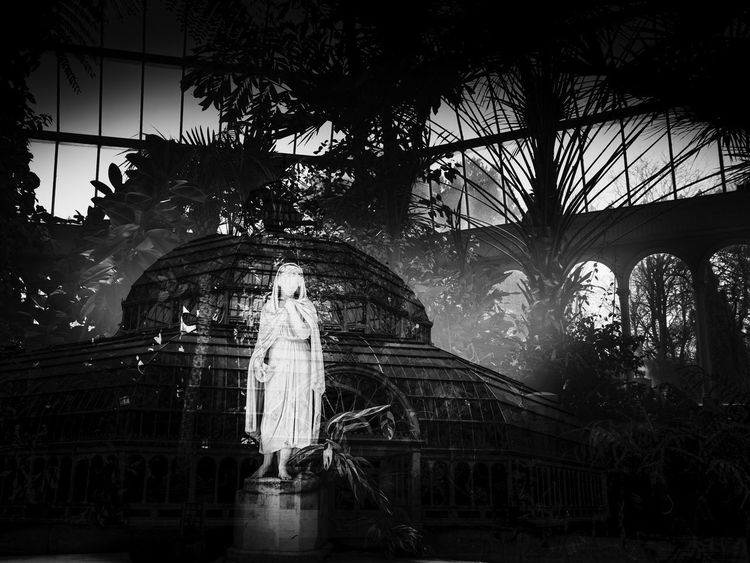 In camera double exposure, Sefton Park, Liverpool, England Liverpool Liverpool England PalmHouse Architecture Built Structure Day Female Likeness Growth Human Representation No People Outdoors Sculpture Sefton Park Statue Tree Wedding Dress