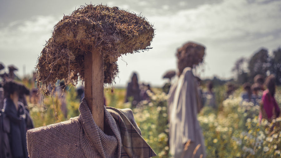 Close-up of scarecrows on agricultural field