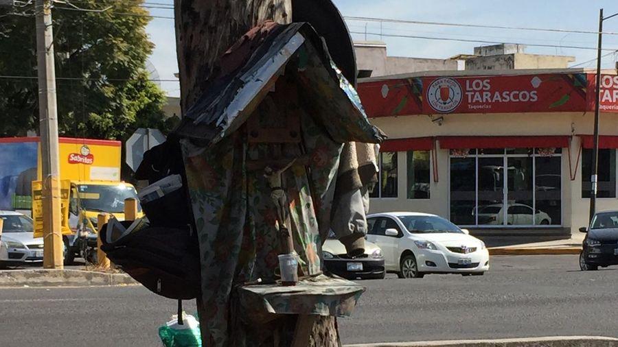 El Cristo de los toreros del semáforo Altar Toreros Del Semáforo Cristo De Los Pobres Avenida Semáforo árbol