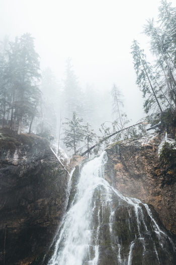 foggy waterfall in Austria Tree Scenics - Nature Beauty In Nature Water Waterfall Forest Nature Rock No People Rock - Object Motion Non-urban Scene Flowing Water Outdoors Power In Nature Flowing Foggy Fog Mood Mist Winter Austria