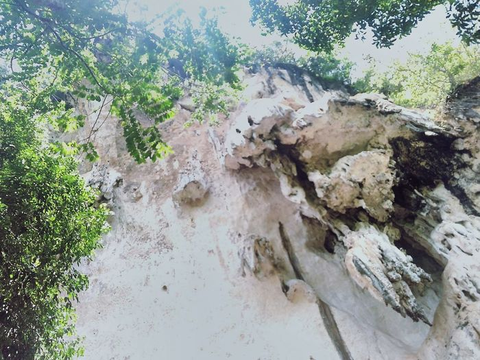 Nature Outdoors Cave Temple No People Thailand Treeonahill Day Tree