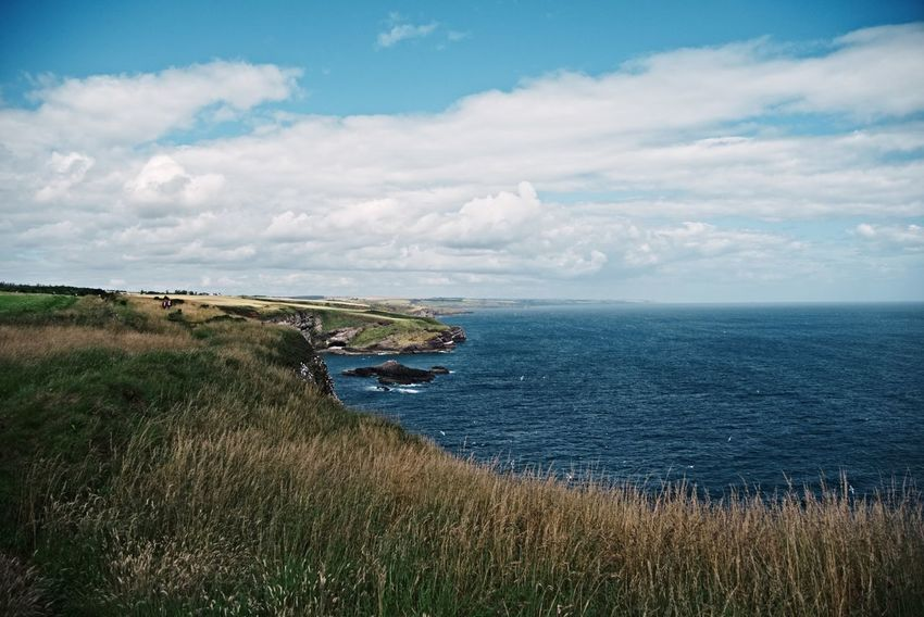 Crawton Crawton Fowlsheugh Sea Cloud - Sky Horizon Over Water Outdoors Water Landscape Scenics Beauty In Nature Cliff Sky Tranquility Scotland Aberdeenshire Nature No People Day Birds