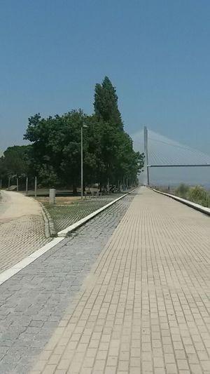 Lisbon - Portugal Garden Bridge River View Tejo River Lisboa Portugal Garden And River