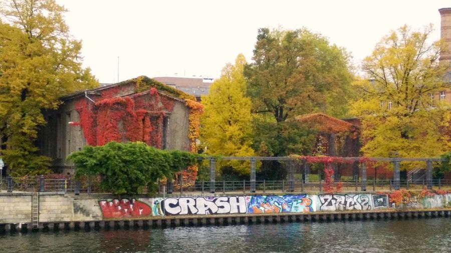 Berlin Graffiti Graffiti Autumn Autumn Colours Building Building Exterior Built Structure Change Day Graffiti Wall Growth Nature No People Outdoors Plant Reflection River River Wall Sky Spree River Spree Riverside Text Tree Water Waterfront