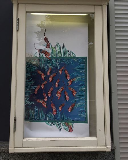 View of fish in glass window