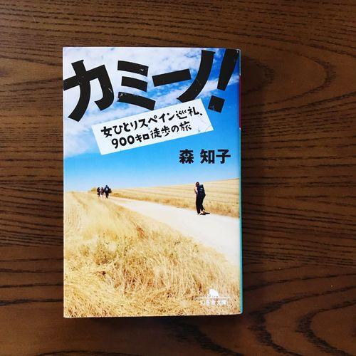 Book Travel