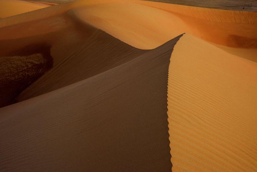 Desert Art Abu Dhabi Abu Dhabi Desert Abu Dhabi UAE Arab Arabian Art Curves Curves And Lines Desert Desert Art Desert Beauty Desert Curves Desert Dunes Desert Landscape Desert Lines Deserts Around The World Desrt Scenes Duende Dune Dunes Liwa Liwa Desert UAE United Arab Emriates