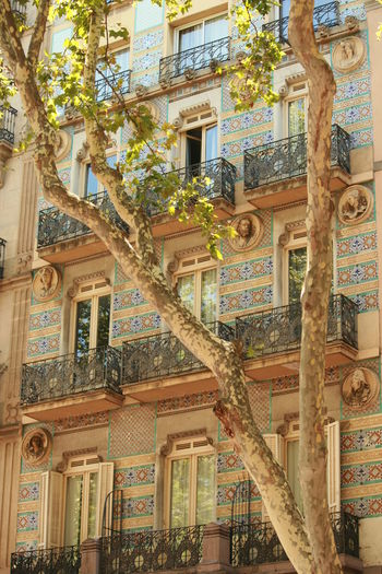 Architecture Balcony View Barcelona Façade Historical Building Mosaic Mosaic Tiles Mosaics Architectural Feature Balconies Balconiesarecool Balcony Facade Detail Facades Mosaic Art Street Photography Streetphotography