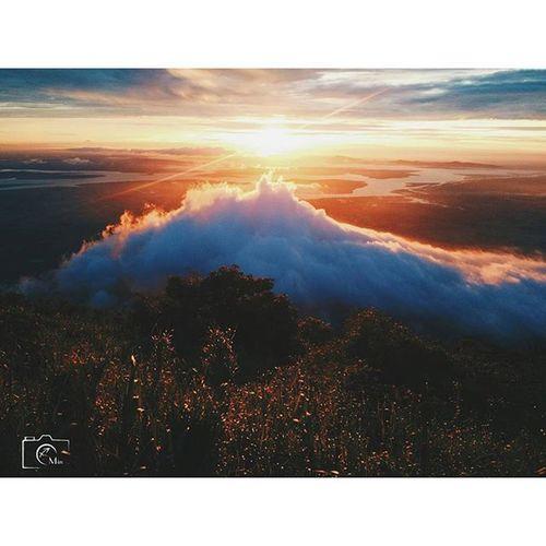 Đại dương mây ... _____________________________________ Clouds Cloudocean Topofmountain Instagood Sky Sunrise