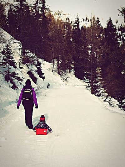 Winter Snow Cold Temperature Full Length One Person Nature Winter Sport