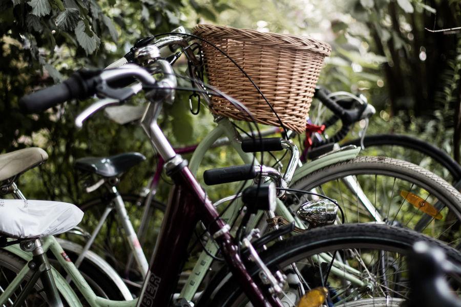 Basket Bicycle Bicycle Basket Bicycle Rack Bike Basket Bikesaroundtheworld Bikini Close-up Day Land Vehicle Mode Of Transport No People Outdoors Stationary Transportation