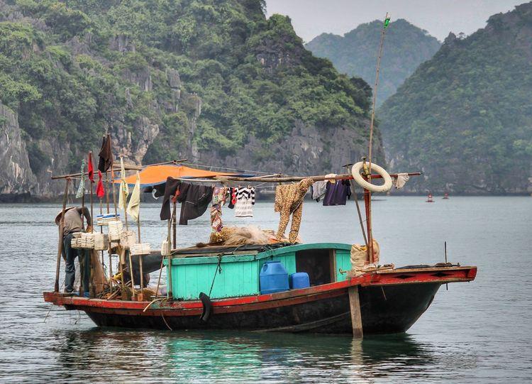 Hạ Long Bay, nel Vietnam nord-orientale, è conosciuta per le acque smeraldine e le migliaia di isole calcaree ricoperte di foresta pluviale che le si ergono attorno 😉 Travel Destinations Boat Halong Bay Vietnam Vietnam Water Nautical Vessel Tree Mountain Mode Of Transportation Plant Transportation Travel Fishing Boat Beauty In Nature Outdoors
