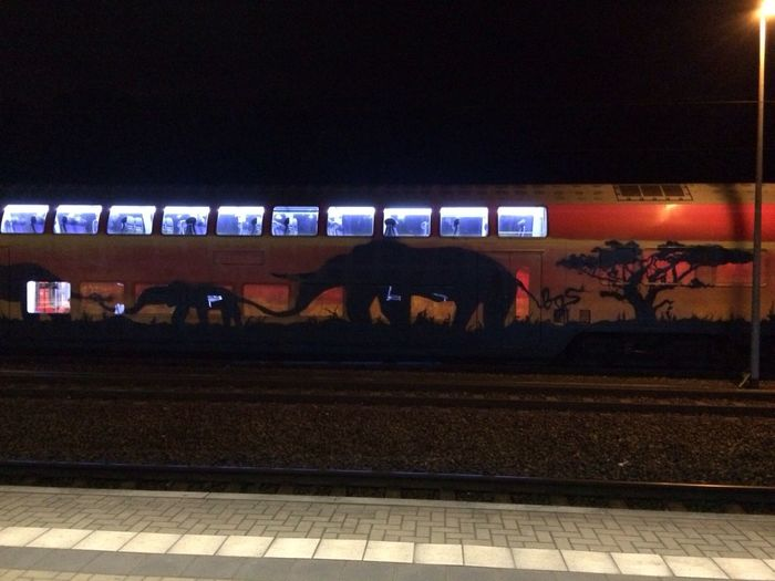 Eine schöne Zuggestaltung Public Transportation Pirna Running Late S-bahn