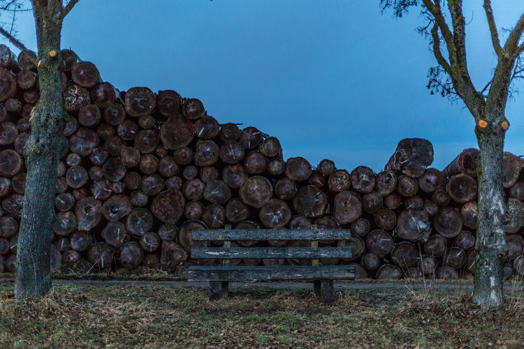 Mysterious bank at mysterious place Arrangement Available Light Bank Deforestation Depth Environmental Issues Evening Exploration Forestry Industry Geometry Gloomy Landscape Log Low Angle View Mysterious Mystic Nature Night Pile Stack Timber Tree Urban Wood Wood Pile