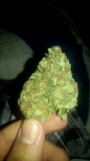 the cousin nug hella big Nug Blazingg <3 Potleaf #earrings #love #marijuana