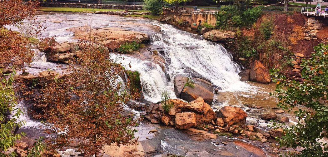 Found this one out of the blue, but seemed perfect for the fall season Beauty In Nature Day Flowing Flowing Water Greenville, SC Motion Outdoors Rock - Object South Carolina Stream Tranquil Scene Tranquility Water Waterfall